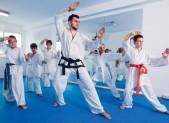 HD-399---karate
